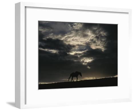 A Wild Horse is Silhouetted under Ominous Storm Clouds-Raymond Gehman-Framed Art Print