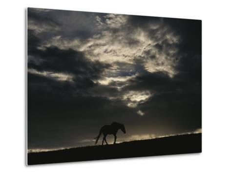 A Wild Horse is Silhouetted under Ominous Storm Clouds-Raymond Gehman-Metal Print