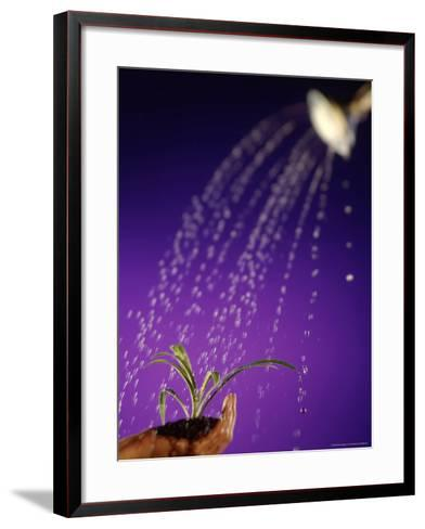Water Pouring Onto Plant in Hand-Jim McGuire-Framed Art Print