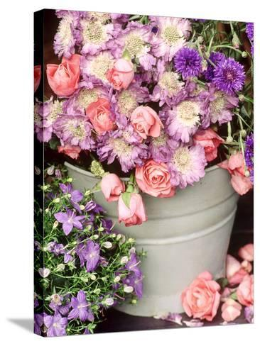 Summer Flowers in Bucket, Rosa, Scabiosa, Centaurea, Campanula-Lynne Brotchie-Stretched Canvas Print
