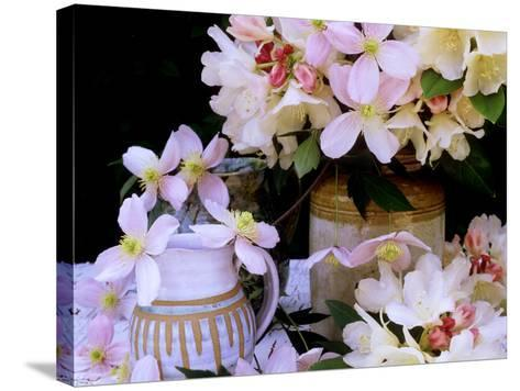 """Rhododendron Yak Hybrid """"Golden Torch"""" and Pink Clematis Montana (Travellers Joy)-James Guilliam-Stretched Canvas Print"""