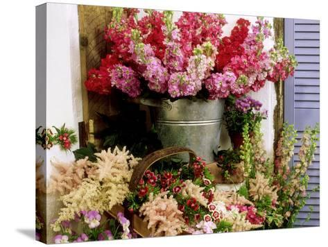 Summer Still Life-James Guilliam-Stretched Canvas Print