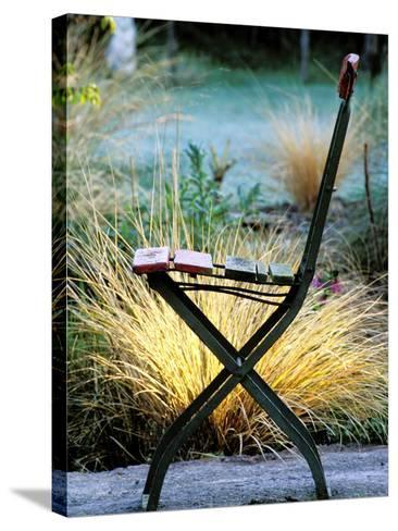 Chair (Bandstand) with Stipa Arundinacea (Pheasant Grass)-Lynn Keddie-Stretched Canvas Print