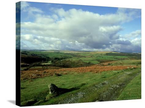 Dartmoor, Devon-David Cayless-Stretched Canvas Print