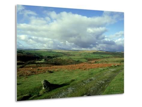 Dartmoor, Devon-David Cayless-Metal Print