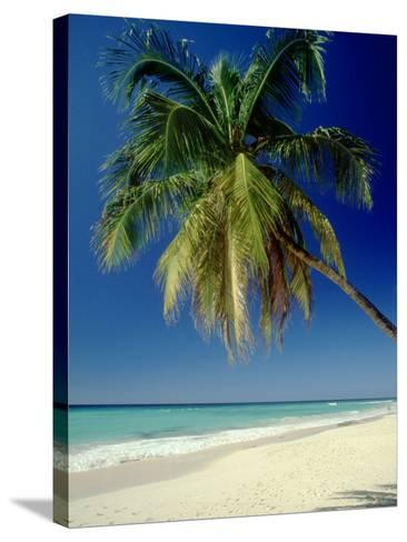 Beach, West Indies-Mike England-Stretched Canvas Print