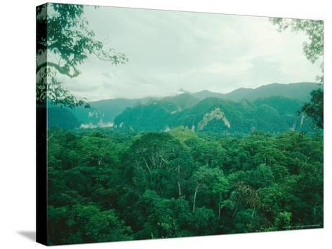 Mulu National Park, Borneo, Weather Time-Lapse, 6Pm-Rodger Jackman-Stretched Canvas Print