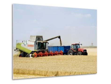 Combine Harvester Unloading Grain into Trailer, England-Martin Page-Metal Print