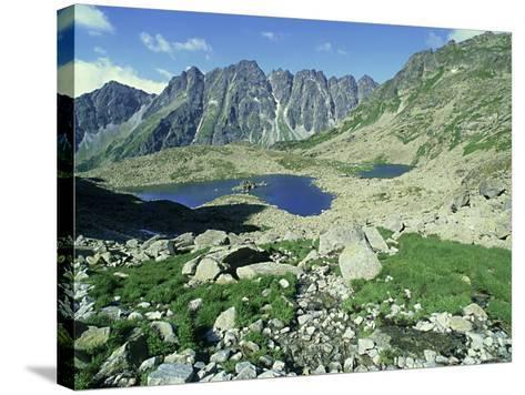 High Tatra Mountains National Park, Slovakia-Richard Packwood-Stretched Canvas Print