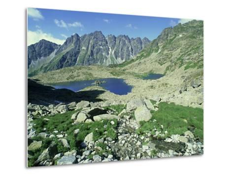High Tatra Mountains National Park, Slovakia-Richard Packwood-Metal Print
