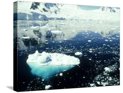 Icebergs, Antarctic Peninsula-Rick Price-Stretched Canvas Print