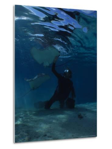 Hawai Sting Ray, with Diver, Polynesia-Gerard Soury-Metal Print