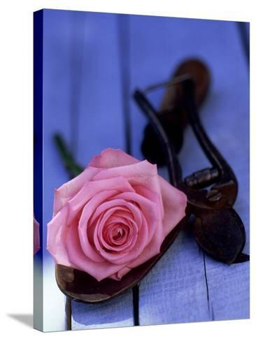 Summer Still Life Outdoors, Single Stem of Pink Rosa (Rose) Resting on Hand Trowel-James Guilliam-Stretched Canvas Print