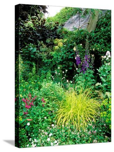 Country Garden with Colourful Perennials, Pond, Greenhouse and Statues, Sharcott Manor, Wiltshire-Lynn Keddie-Stretched Canvas Print