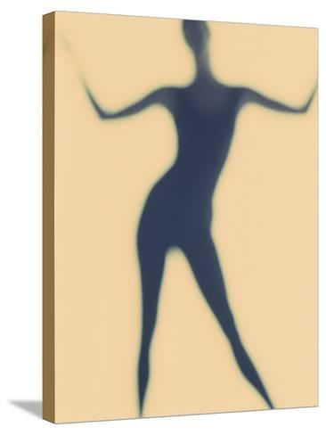 Silhouette of a Woman Standing--Stretched Canvas Print