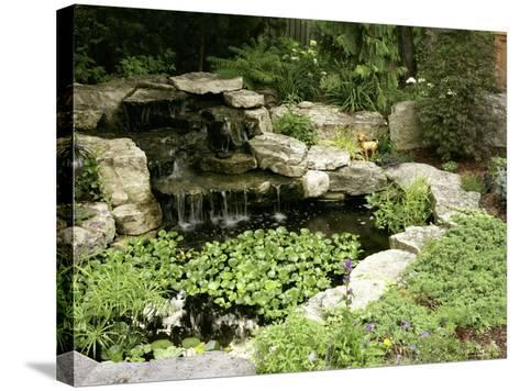 Garden Pond with Waterfall--Stretched Canvas Print