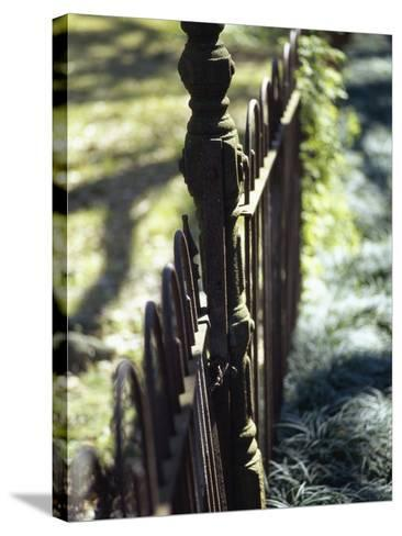 Close-up of a Pointed Metal Gate--Stretched Canvas Print