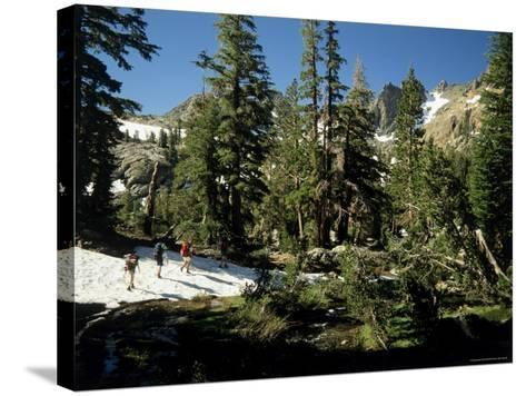Ansel Adams Wilderness, California, USA--Stretched Canvas Print