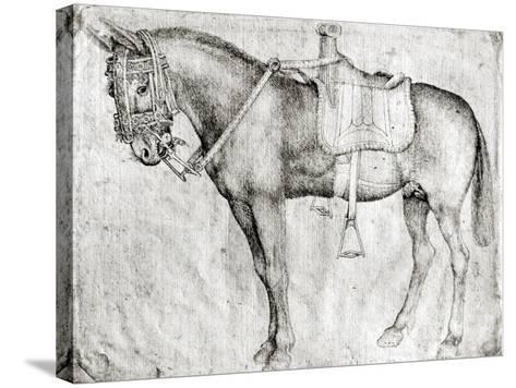 Mule-Antonio Pisani Pisanello-Stretched Canvas Print
