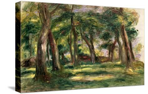 Trees-Pierre-Auguste Renoir-Stretched Canvas Print
