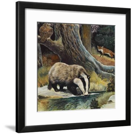 Badger, Fox, Owl and Mouse--Framed Art Print