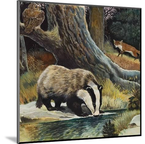 Badger, Fox, Owl and Mouse--Mounted Giclee Print