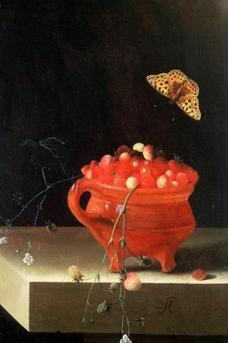 Pot of Wild Strawberries-Adrian Coorte-Stretched Canvas Print