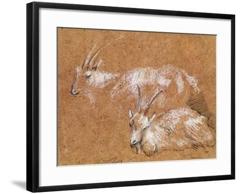 Study of Goats-Thomas Gainsborough-Framed Art Print