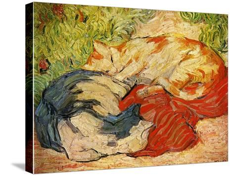 Cats, 1909-10-Franz Marc-Stretched Canvas Print