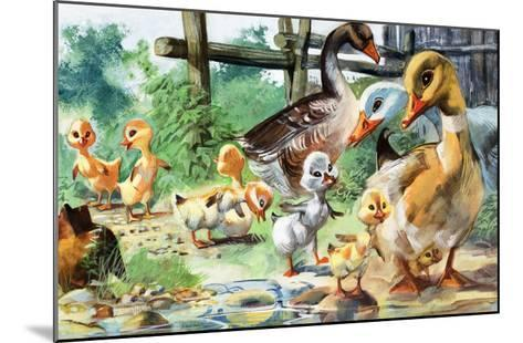 The Ugly Duckling--Mounted Giclee Print