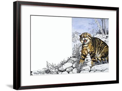 Nature's Kingdom: Hunter of the Highlands - the Wildcat-Susan Cartwright-Framed Art Print