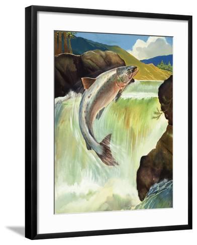 Salmon--Framed Art Print