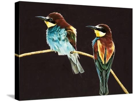 Unidentified Pair of Birds--Stretched Canvas Print