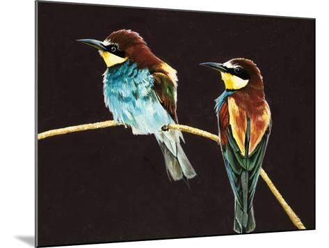 Unidentified Pair of Birds--Mounted Giclee Print