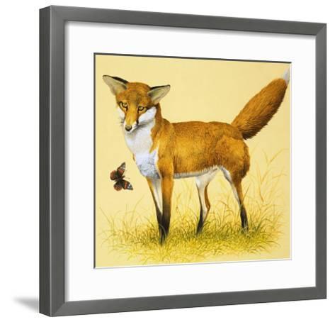 Fox and Butterfly--Framed Art Print