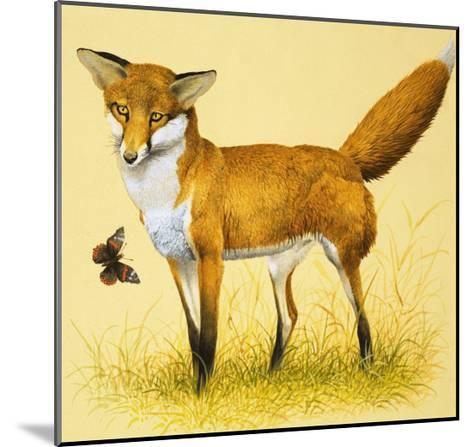 Fox and Butterfly--Mounted Giclee Print