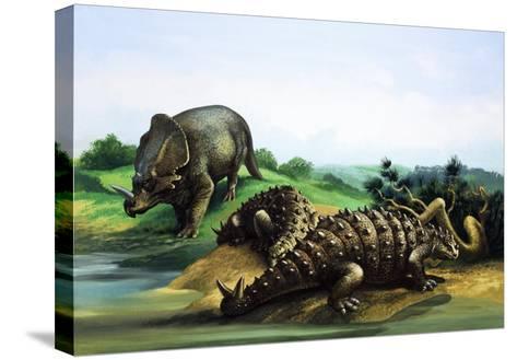 Monoclonius and Scolosaurus--Stretched Canvas Print