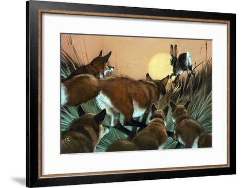 Foxes Chasing a Rabbit--Framed Art Print