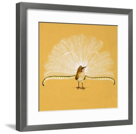Lyre Bird--Framed Art Print