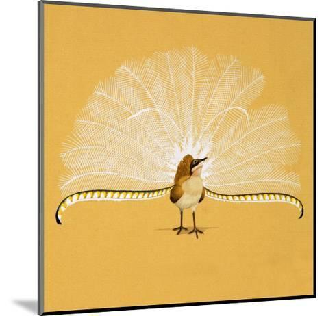 Lyre Bird--Mounted Giclee Print