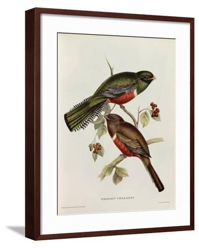 Trogon Collaris-John Gould-Framed Art Print