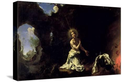 St. Dominic Penitent-Carlo Dolci-Stretched Canvas Print