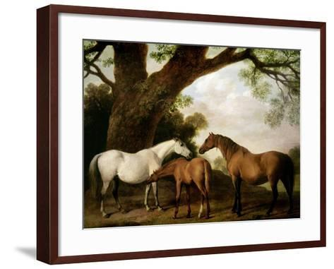 Two Shafto Mares and a Foal, 1774-George Stubbs-Framed Art Print