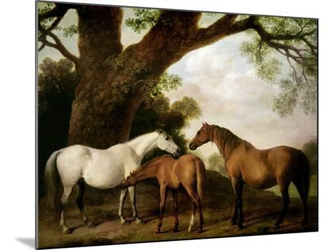 Two Shafto Mares and a Foal, 1774-George Stubbs-Mounted Giclee Print