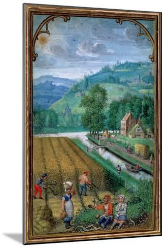 September: Harvesting, Ploughing and Sowing, from a Book of Hours, c.1540-Simon Bening-Mounted Giclee Print