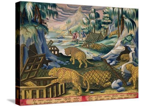 Capturing Leopards, Plate 15 from Venationes Ferarum, Avium, Piscium-Jan van der Straet-Stretched Canvas Print