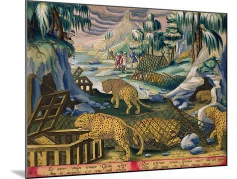 Capturing Leopards, Plate 15 from Venationes Ferarum, Avium, Piscium-Jan van der Straet-Mounted Giclee Print