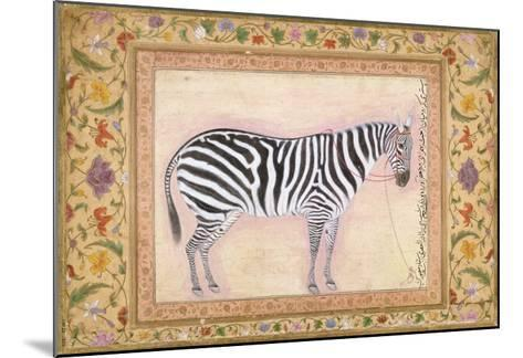 Zebra, from the 'Minto Album', 1621- Mansur-Mounted Giclee Print