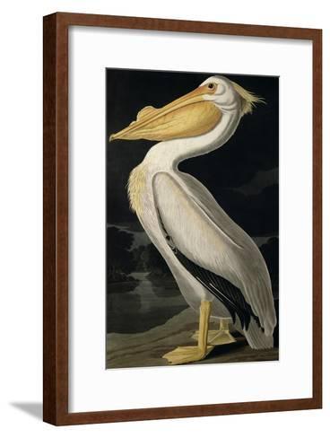 American White Pelican, from Birds of America, Engraved by Robert Havell-John James Audubon-Framed Art Print