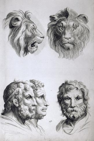 Similarities Between the Head of a Lion and a Man-Charles Le Brun-Stretched Canvas Print
